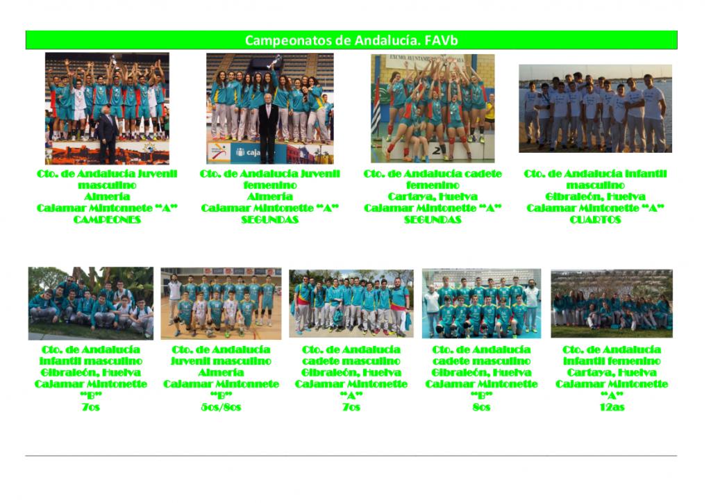 Resultados 2015 - 2016