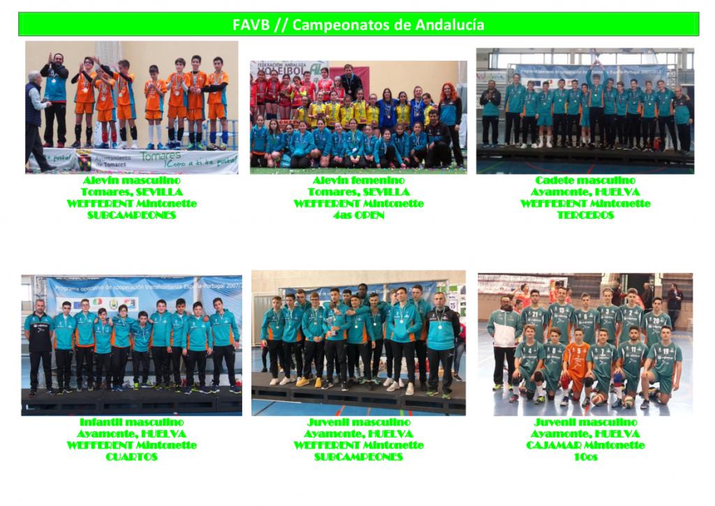 Resultados 2017 - 2018